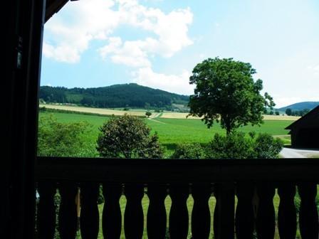 Ferienwohnung schwarzwald zell am harmersbach kuretzhof for Wohnzimmer dornstetten