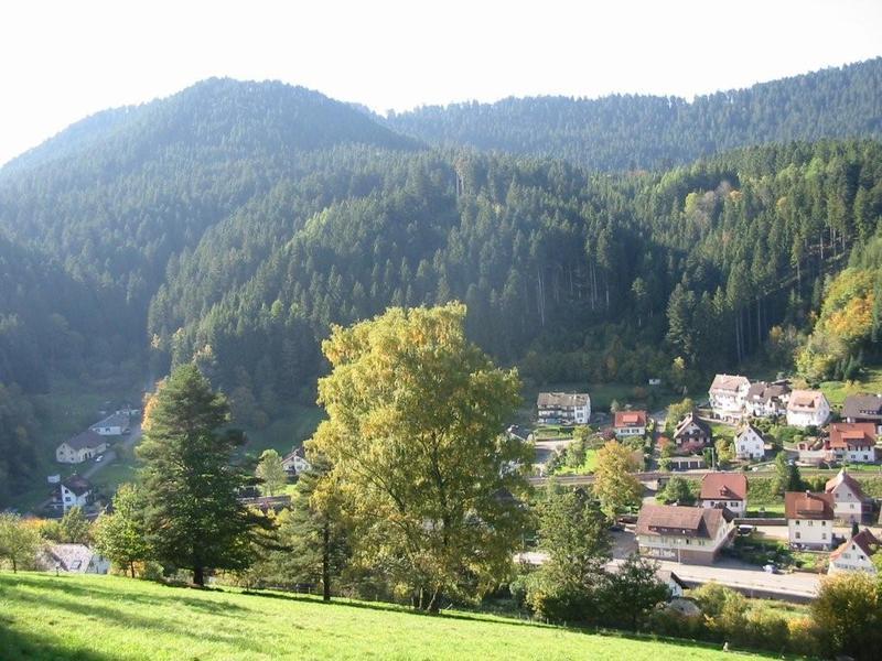 Ferienwohnung schwarzwald alpirsbach ferienwohnung for Ferienwohnung im schwarzwald